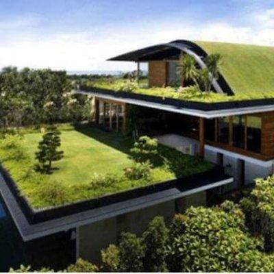 Влаштування зелених дахів. М'які покрівлі
